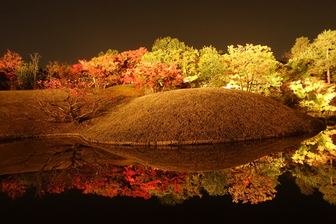 京都のライトアップ2018 梅小路公園 紅葉まつり No14