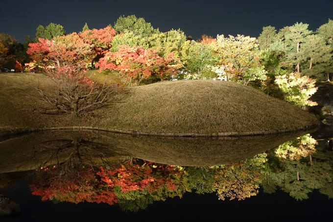 京都のライトアップ2018 梅小路公園 紅葉まつり No15