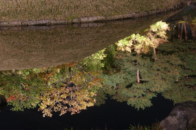 京都のライトアップ2018 梅小路公園 紅葉まつり No16