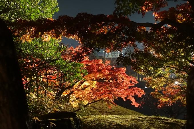 京都のライトアップ2018 梅小路公園 紅葉まつり No20