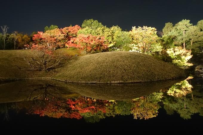 京都のライトアップ2018 梅小路公園 紅葉まつり No23