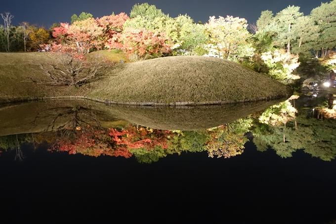京都のライトアップ2018 梅小路公園 紅葉まつり No24