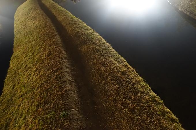 京都のライトアップ2018 梅小路公園 紅葉まつり No28