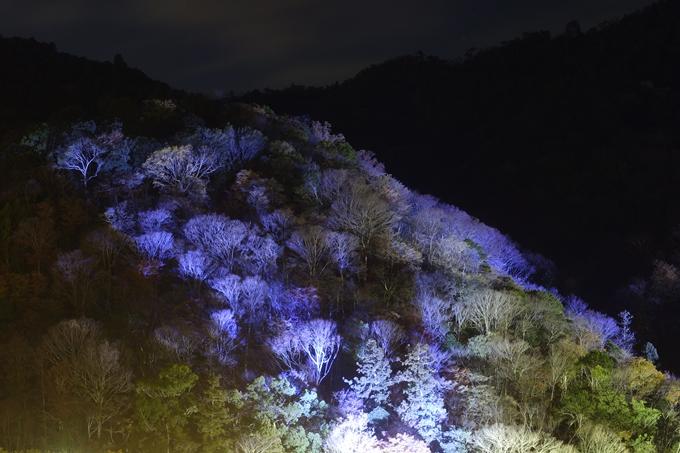 嵐山花灯路2018_01 No3