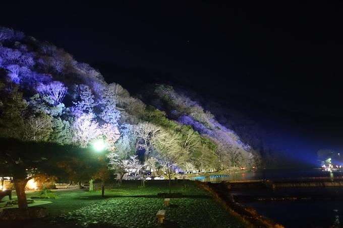 嵐山花灯路2018_01 No6