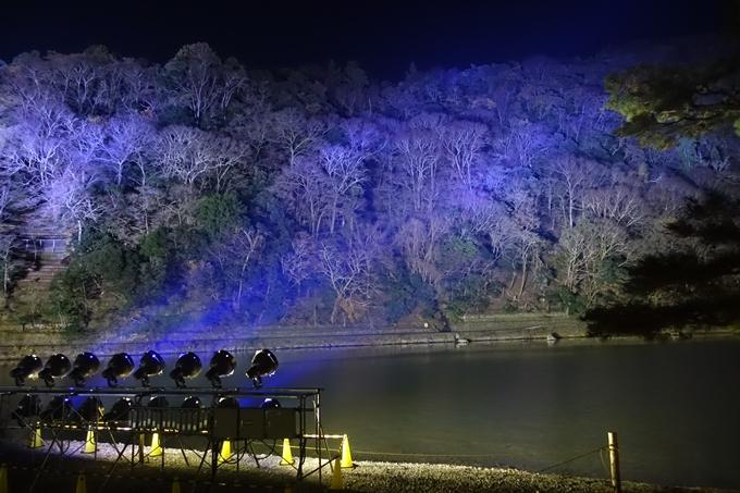 嵐山花灯路2018_01 No17