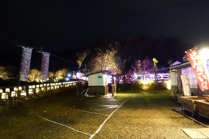 京都のライトアップ2018 丹波夢ナリエ No2