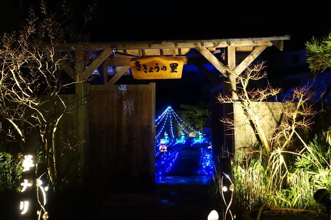 京都のライトアップ2018 丹波夢ナリエ No3