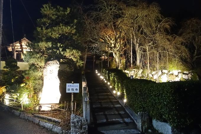 京都のライトアップ2018 丹波夢ナリエ No14