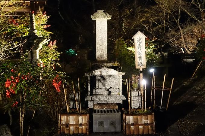 京都のライトアップ2018 丹波夢ナリエ No15
