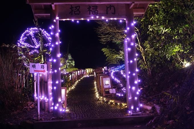 京都のライトアップ2018 丹波夢ナリエ No17