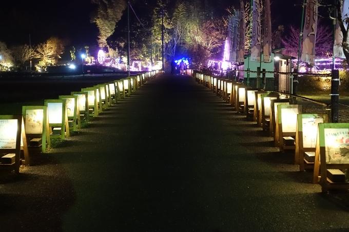 京都のライトアップ2018 丹波夢ナリエ No41