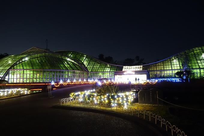 京都府立植物園イルミネーション2018 No9