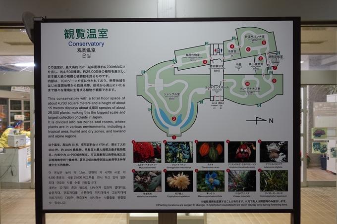 京都府立植物園イルミネーション2018 No11