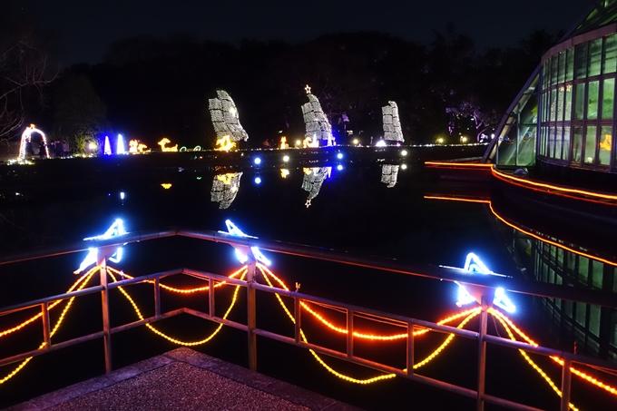 京都府立植物園イルミネーション2018 No12