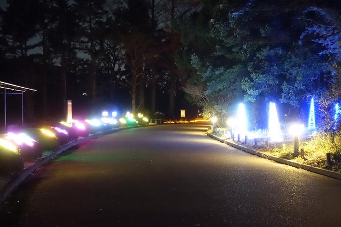 京都府立植物園イルミネーション2018 No22
