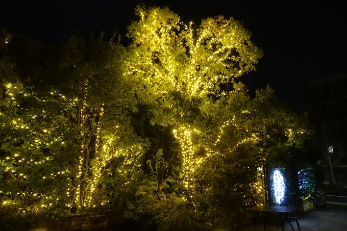 北山ウェディングストリート クリスマスイルミネーション No25