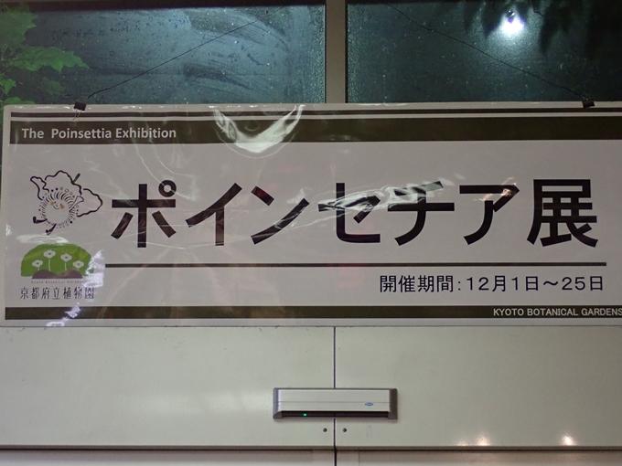 京都府立植物園イルミネーション2018 No34