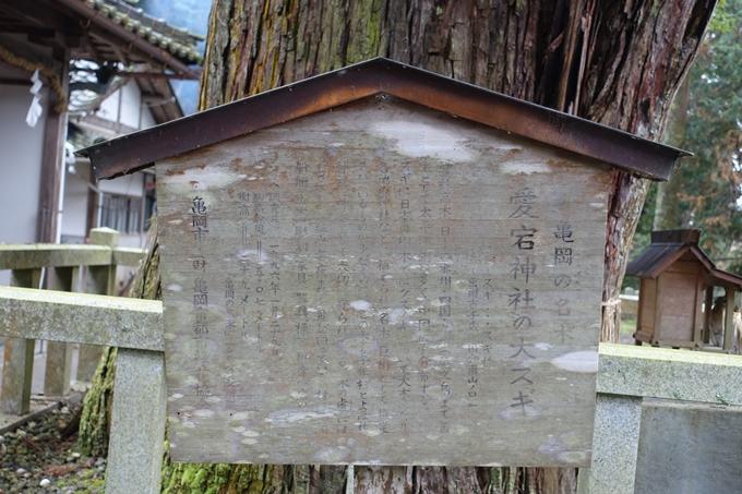 愛宕神社_亀岡市 No15