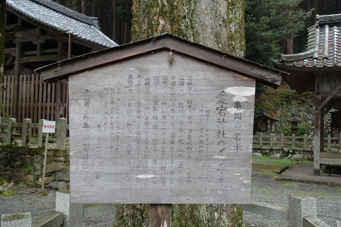 愛宕神社_亀岡市 No18