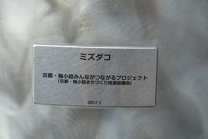 ミズダコ像 No5