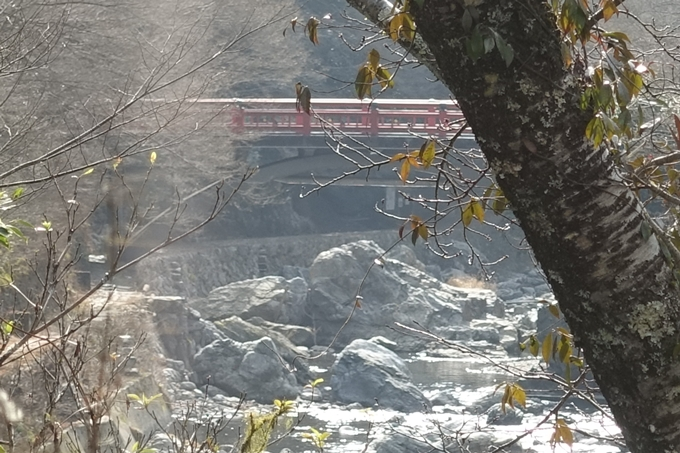 愛宕山鉄道_愛宕神社 No122