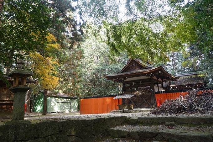 御蔭神社 No10