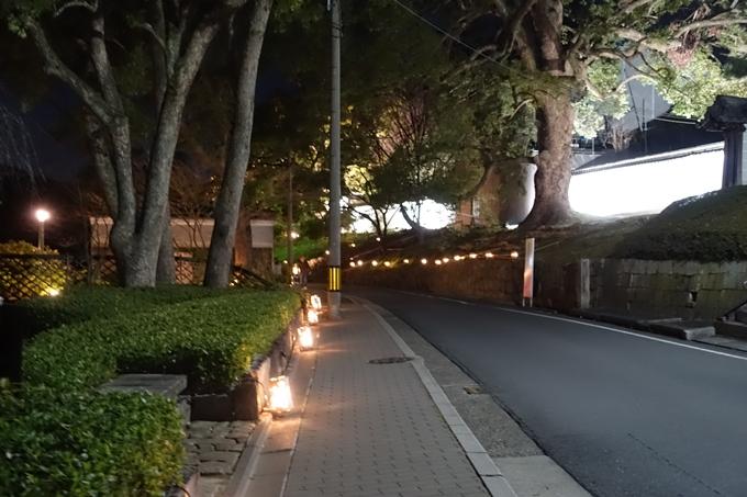 東山花灯路2019 No71
