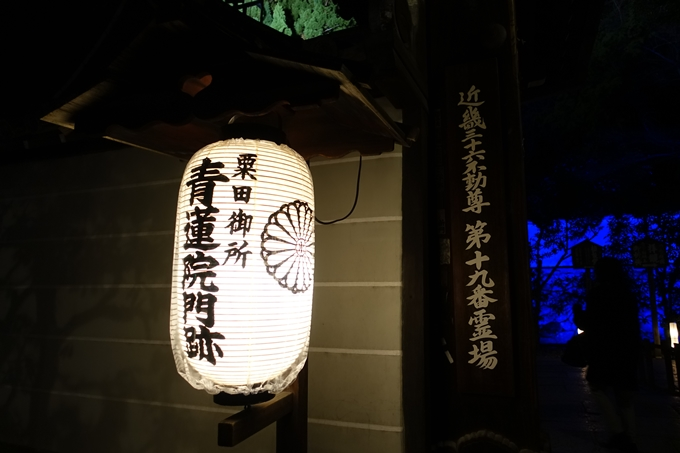 東山花灯路2019 No74