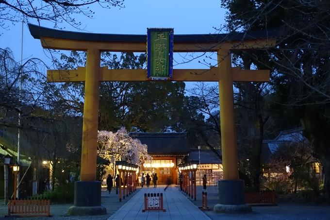 京都桜速報2019_04 No2