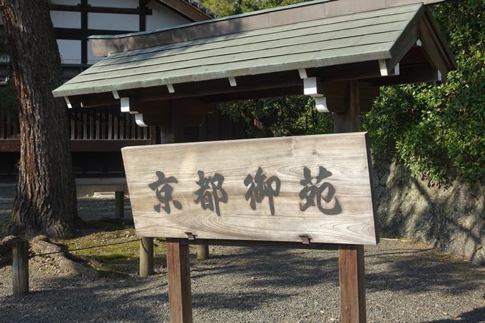 京都桜速報2019_38 No2
