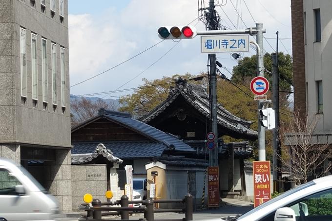 京都桜速報2019_19 No19