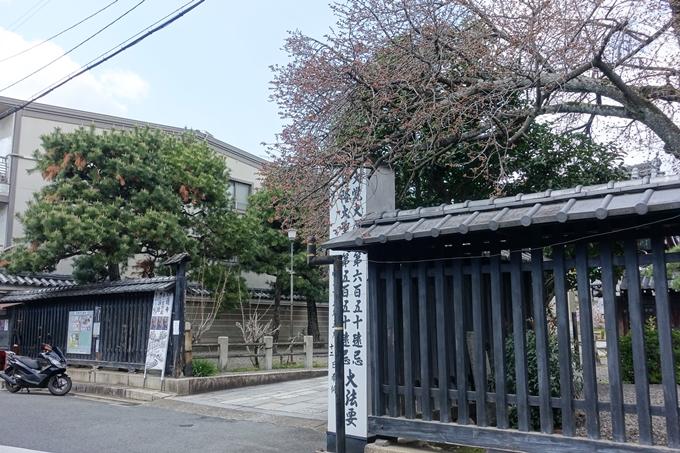 京都桜速報2019_20 No2