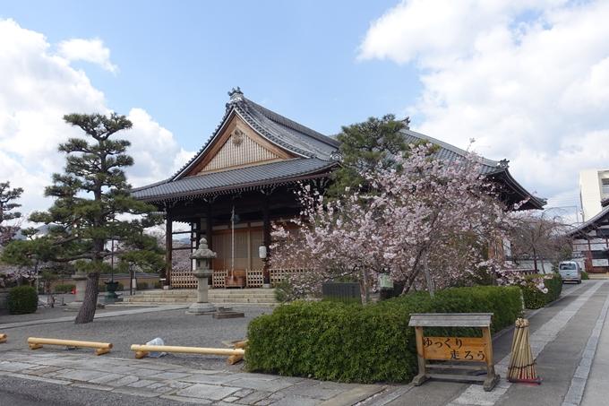京都桜速報2019_20 No4