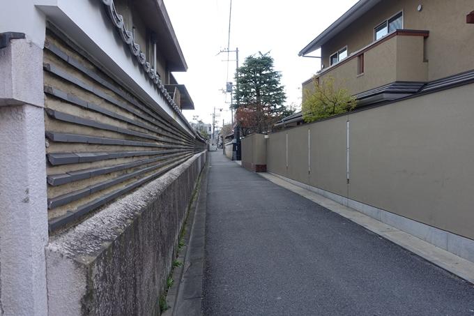京都桜速報2019_20 No11