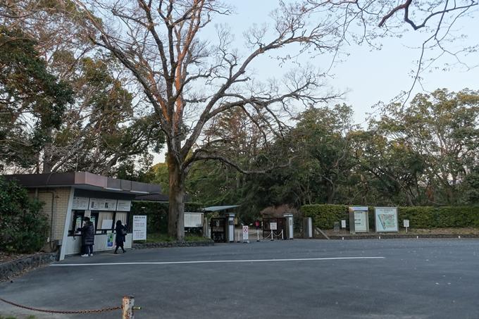 京都桜速報2019_23 No2