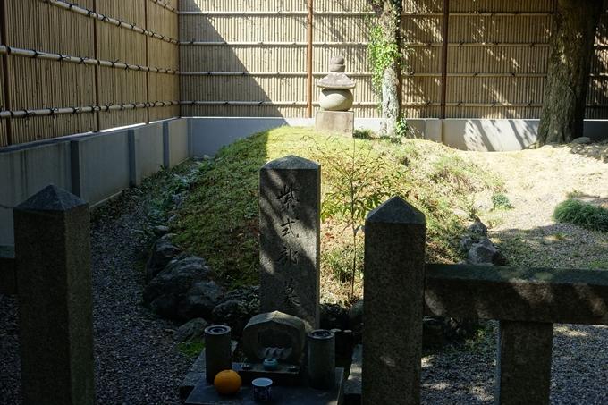 京都桜速報2019_32 No11