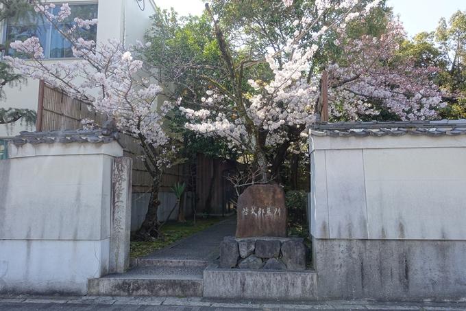 京都桜速報2019_32 No5
