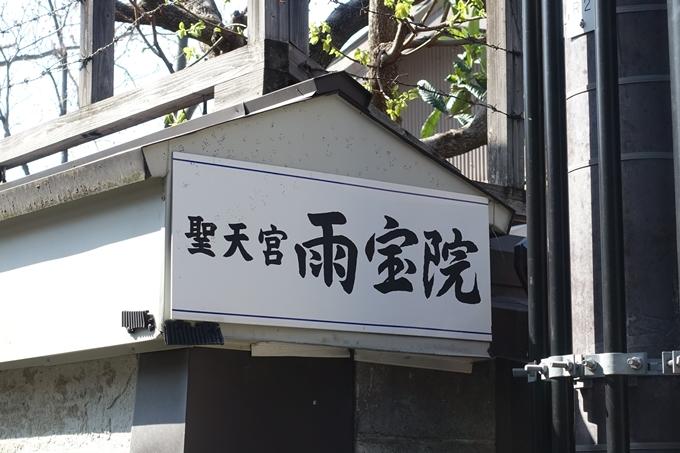京都桜速報2019_33 No3