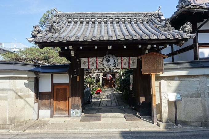 京都桜速報2019_33 No16