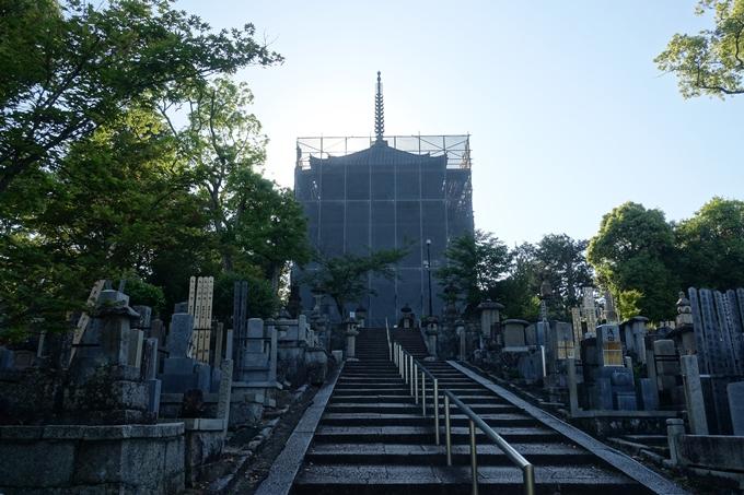 山崎闇斎_墓所 No7