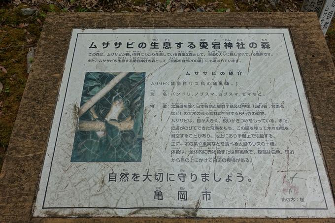 金毘羅神社・牛松山 No15