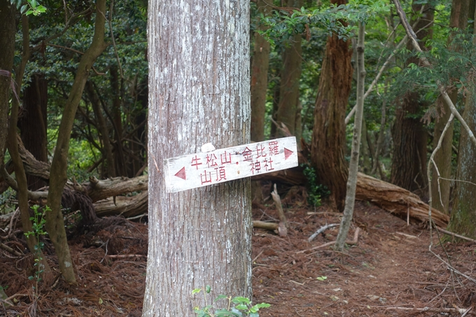 金毘羅神社・牛松山 No43