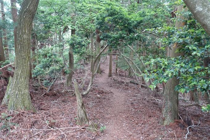 金毘羅神社・牛松山 No54