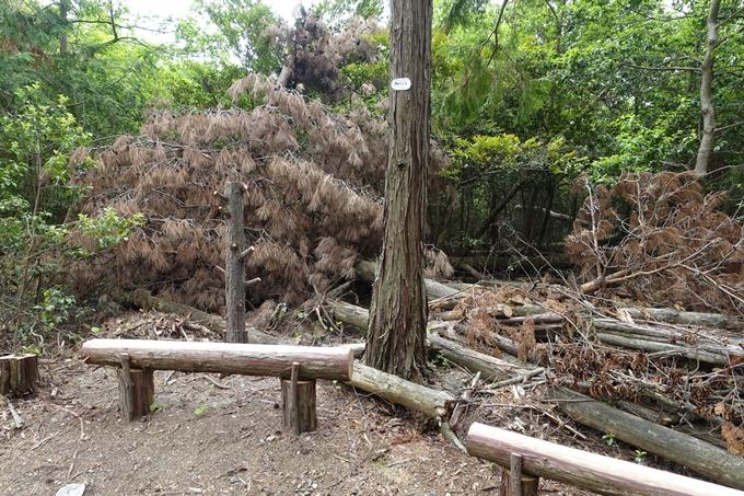 金毘羅神社・牛松山 No27