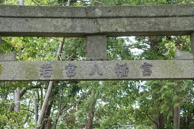 若宮八幡宮_亀岡市大井町 No6