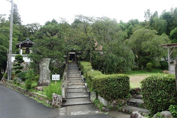 谷性寺 No5