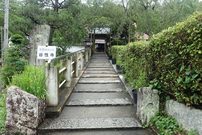 谷性寺 No8