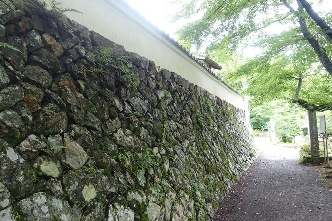 篠葉神社 No3