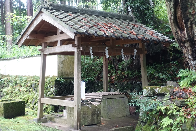 篠葉神社 No11